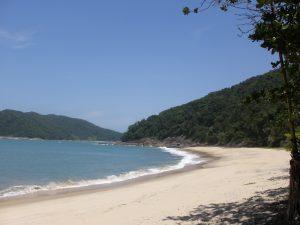 Praia da Figueira - Ubatuba / SP